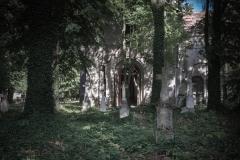 Stary cmentarz wokół cerkwi w Starych Oleszycach