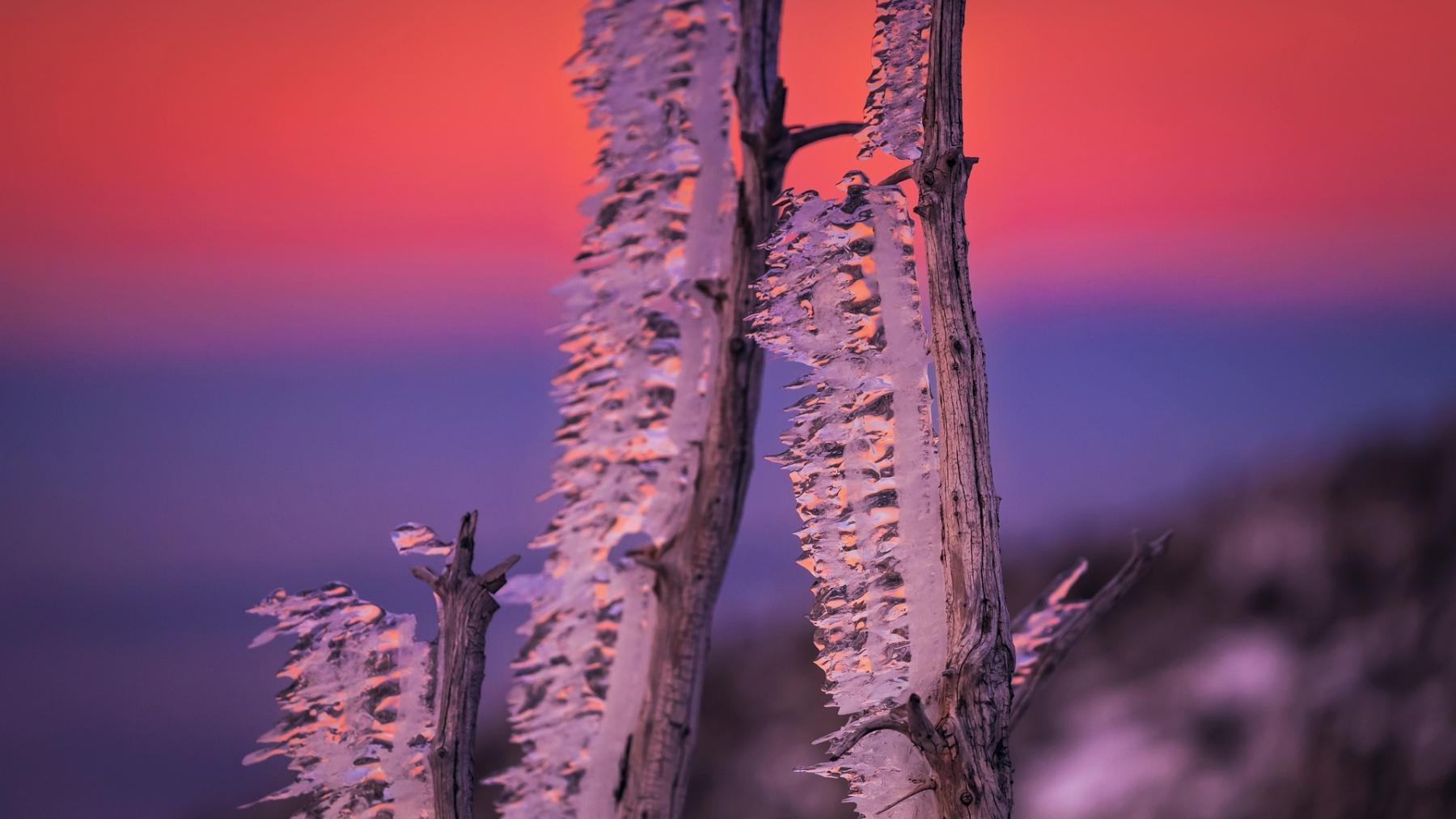Karkonosze - po lodowej burzy    fot. Krzysztof Romańczukiewicz