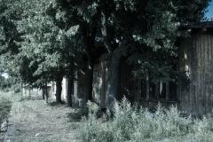 Stacyjki - Mysłakowice - Fot.Krzysztof Romańczukiewicz