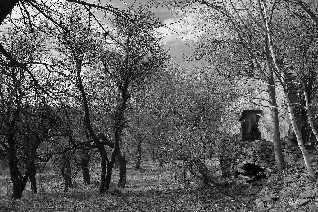Miejsca zapomniane - Wymarła górska osada - Krowiarki