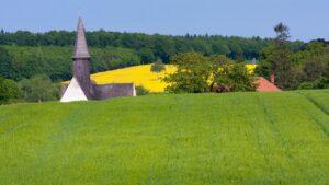 Kwitnące rzepaki -majowe pola na Dolnym Śląsku