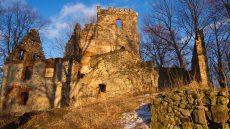 Zamek Lipa w Lipie