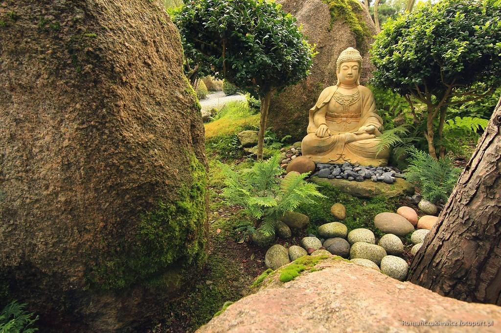 Ogród Japoński wJarkowie