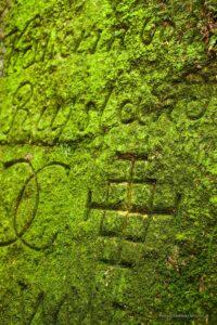 Ryty - napisy naskałach podzamkiem Bolczów