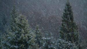 Śnieżyca Gorce fot.Krzysztof Romańczukiewicz www.fotoPort.pl