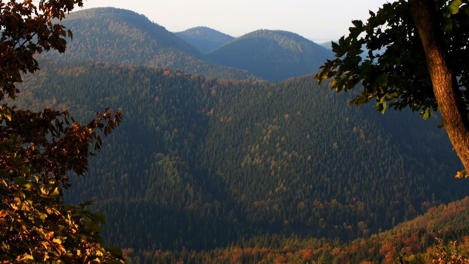 Widok zRogowca - Góry Suche