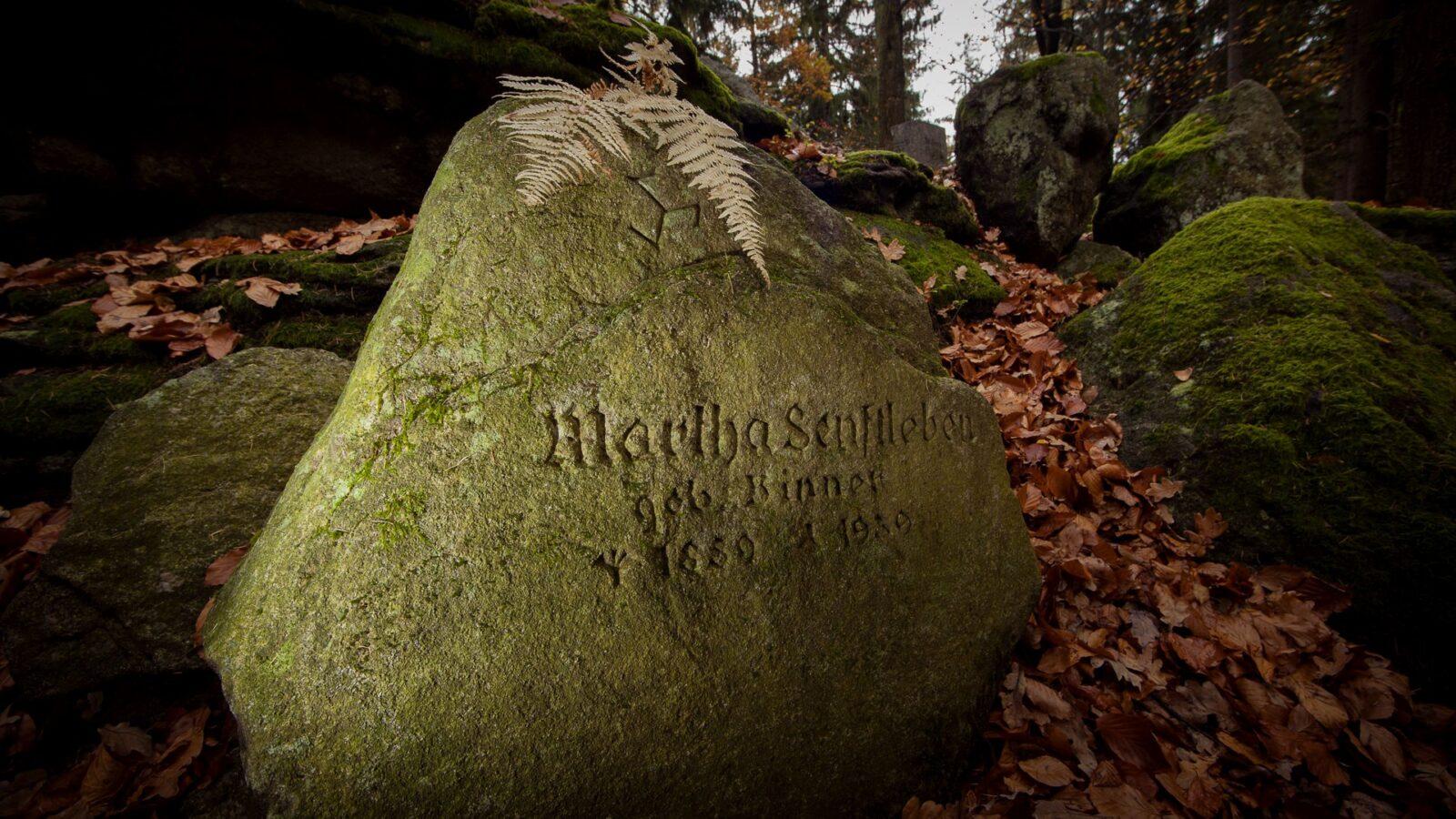 Cmentarzyk czcicieli światła wgórskim lesie nieopodal Michałowic