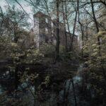 Pielszkowicki zamek