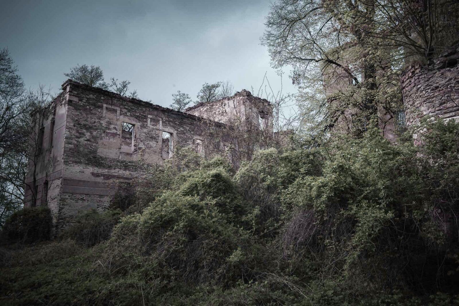 Pielaszkowice. Ruiny zamku