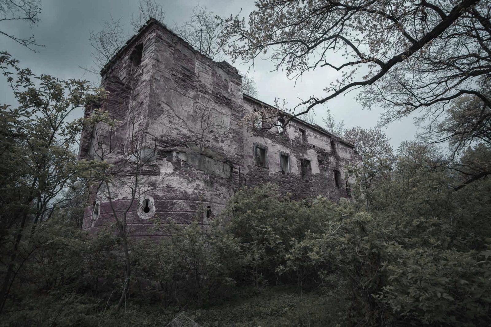 Pielaszkowice. Zamek. Pozostałości starszej części obronnej.