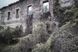 Ruiny. Pałac w Pielaszkowicach
