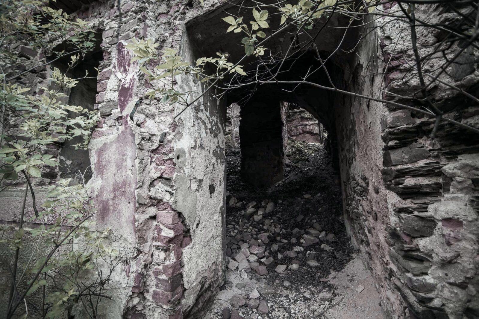 Ruiny. Pałac wPielaszkowicach