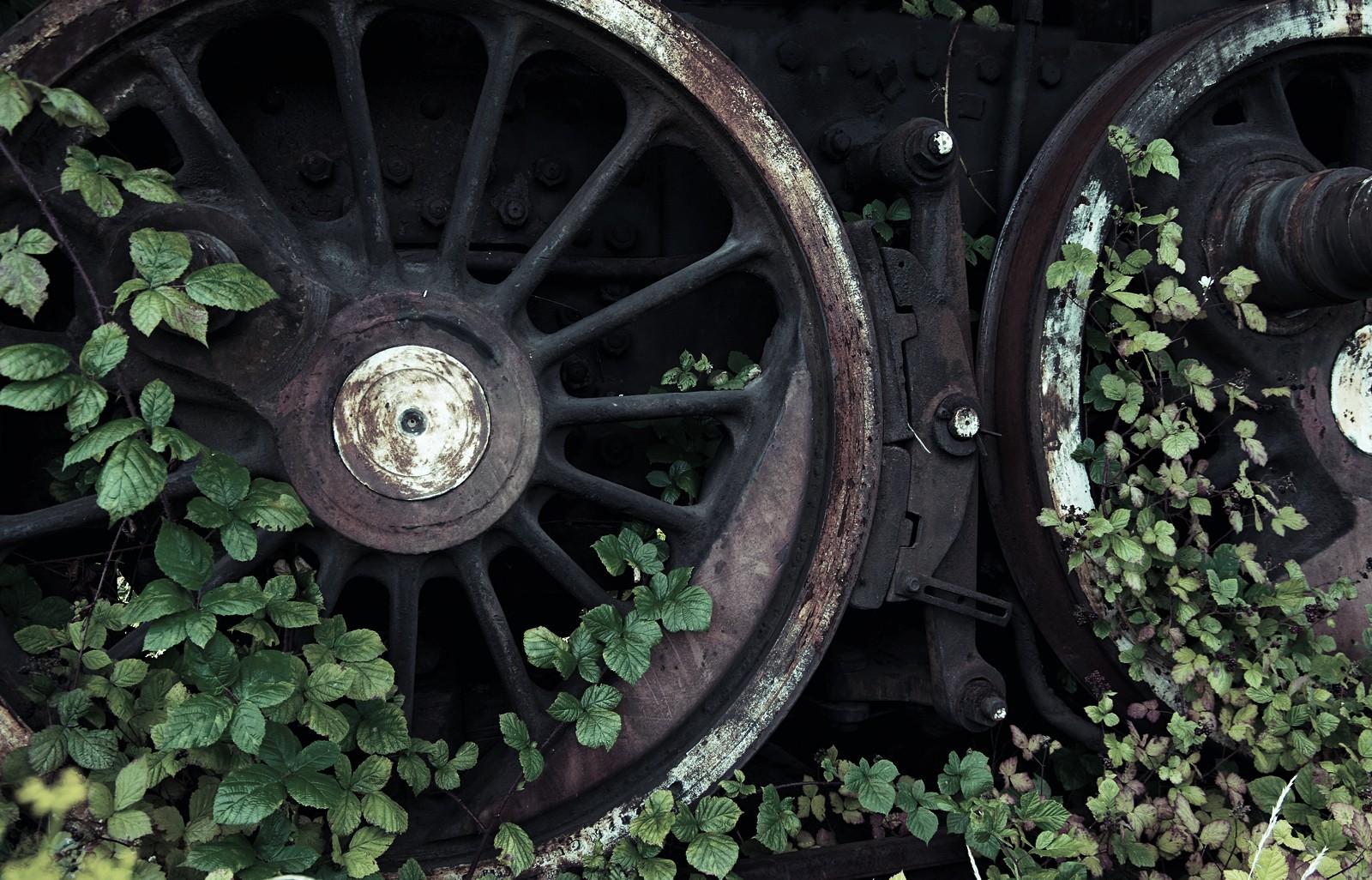 Stara lokomotywa- fot.Krzysztof Romańczukiewicz