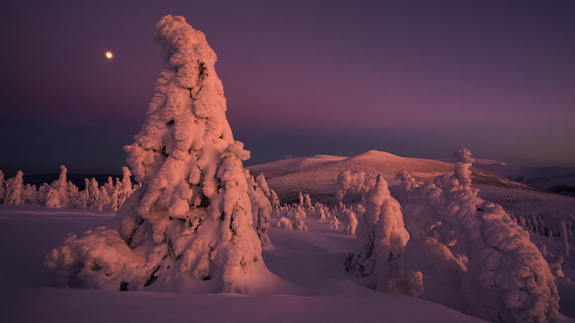 Cicha nocKsiężycowa zimowa noc nadprzełęczą Karkonoską fot.Krzysztof Romańczukiewicz